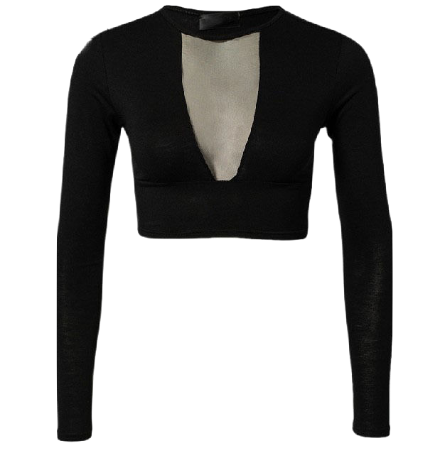 black-plunge-v-mesh-long-sleeve-crop-top