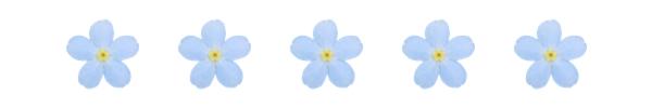 blue-flowers-divider