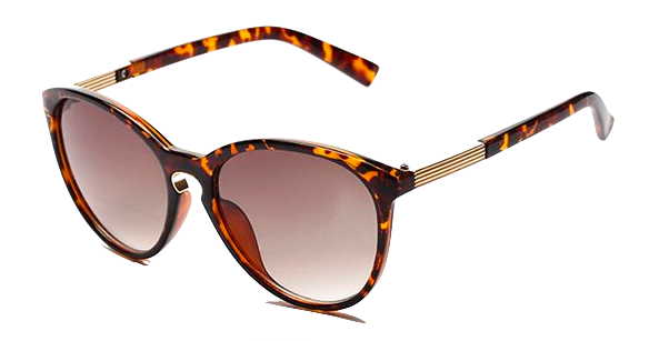 Shades with Leopard Print Frame