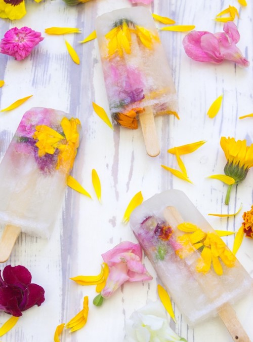 Fancy Champagne Popsicles