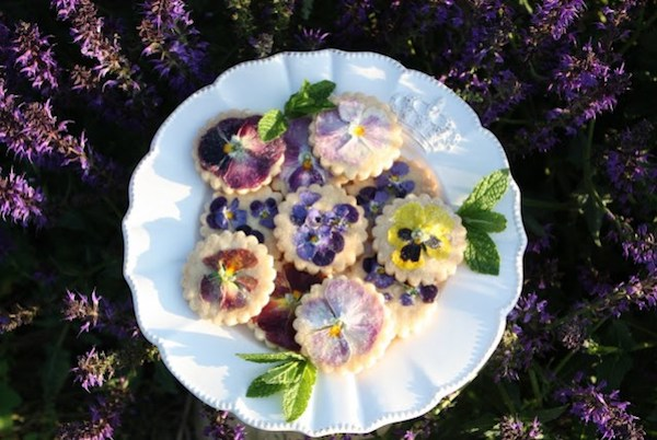 floral-shortbread-cookies-recipe